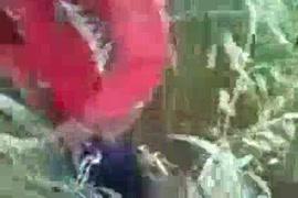 Pdpornvideo